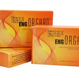 Organoterápico ENG – Energético Geral – 30cps